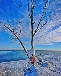 Spring, should be already here but it seems so far away... ❄️ ❄️ ❄️ ❄️ ❄️ #pointpelee #winter #spring #southernpoint #humpday #ontario #frozen #canadaParks #instalove #instadaily #disasterhikers #picoftheday #adventure #beautiful #canada #explore #explorecanada #instapic #instago #instagood #getoutside #liveoutdoors #outdoors #view #lakeerie #camping #photo #nature #nationalpark So Far Away, Camping Photo, Lake Erie, Get Outside, Insta Pic, Ontario, Adventure Travel, National Parks, Frozen
