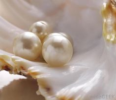 What are the Differences Between Natural and Cultured Pearls?