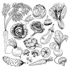 vegetables vegetable clipart freepik groenten legumes gratis drawings vectors drawing leafy silhouette psd vettori vegetales verdure collezione disegni simple ontwerpt