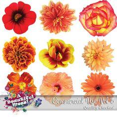 Flowers CU Vol5