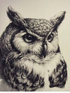 Резултат с изображение за owl tattoo