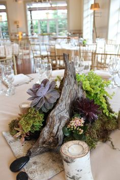 Succulent Wedding Decor at the Stone House at Stirling Ridge • Warren, New…