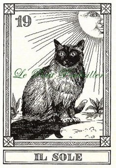 Menegazzi Il Gatti Feline Fortune Telling Cards - #19 - Il Sole [The Sun] ... off to a new home!