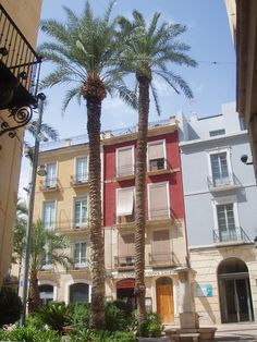 Short presentation of Parks in Alicante. Alicante is a  Lovely sea site place full of greenery.