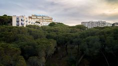Hotel y bloque de edificios sobresalen sobre un pinar de Sant Feliu de Guixols.