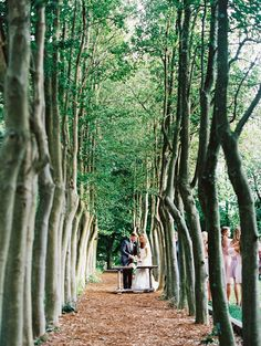 Intimate forest ceremony | Nina and Wes