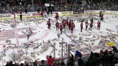 Around 26,000 teddy bears have been thrown onto the ice during an ice hockey match in Calgary, Canada. >>>  The annual ritual by fans of the Calgary Hitmen sees teddies thrown when the first goal in the second period is scored. The bears are then donated to local charities.