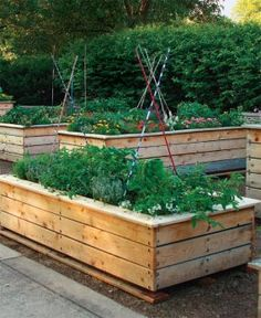 Raised garden beds - love these.