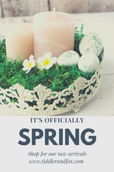 Give your home a lovely Spring re-fresh with our newest arrivals in vintage style homewares Vintage Style, Vintage Fashion, New Growth, Easter Crafts, Spring Flowers, Interior Inspiration, New Look, Interiors, Fresh