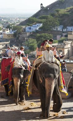 Tourists on elephants riding to Amber Fort, Jaipur