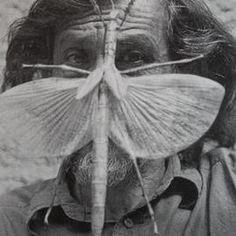 Francisco Toledo:  The Fantastic Zoology