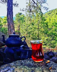 The Red Tea Detox is a new rapid weight loss system that can help you lose several pounds of pure body fat in just 14 days! It involves drinking a special African blend of red tea to help you lose weight fast! New York From Above, Detox Tea Diet, Coffee And Cigarettes, Turkish Tea, Tea Art, Coffee Cafe, Camping Meals, Tea Time, Canning