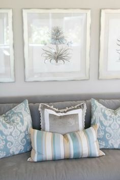 House of Turquoise: Charlotte Hale of Plum Pretty Sugar