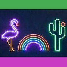 82c6c3f5b4f Neon Wall Light - Cactus - By Sunnylife - Pinks   Green