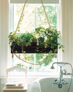 Hanging bathroom plants hanging bathroom plants in windows perfect and beautiful decor ideas hanging plant holders Bathroom Window Curtains, Bathroom Windows, Hanging Curtains, Window Plants, Hanging Herbs, Belle Plante, Eclectic Bathroom, Garden Windows, Bathroom Plants