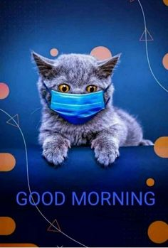 Good Morning Cartoon, Good Morning Animation, Morning Cat, Good Morning Cards, Good Morning Funny, Good Morning Love, Morning Memes, Morning Messages, Good Morning Beautiful Pictures