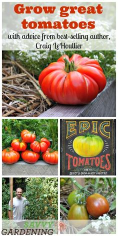 Grow your best tomatoes ever with advice from America's tomato expert, Craig LeHoullier
