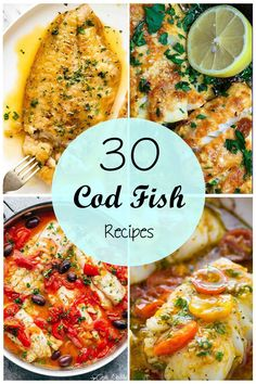 If you're looking for inspiration for what to cook with cod fish – we've got a wonderful collection for you! Here, we have every recipe you need from grilled cod to cod fritters, pan-fried cod, and an easy fish tray bake. Try these out and I promise Grilled Cod Recipes, Cod Fish Recipes, Baked Cod Recipes, Fried Fish Recipes, Seafood Recipes, Healthy Recipes, Easy Cod Recipes, Simple Fish Recipes, Cooking Recipes