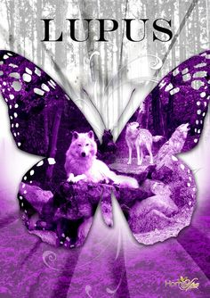 Lupus butterfly, the warrior within. Rheumatoid Arthritis Awareness, Lupus Awareness, Arthritis Relief, It's Never Lupus, Lupus Tattoo, Lupus Quotes, Lupus Facts, Wolf, Papillons