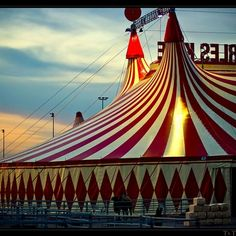 Circus.  Just think how excited this made everyone.......