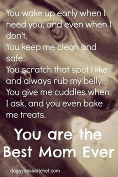 To all the doggie moms