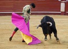 """Résultat de recherche d'images pour """"corrida"""""""