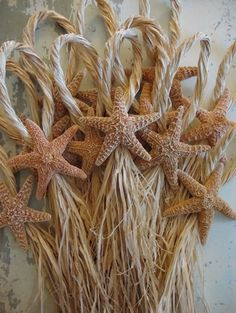 Starfish Escort Cards, Table place cards, White finger Starfish, Blue Starfish, White Knobby Starfish, Dyed Colored Starfish, Ideas with starfish, Shore Chic Beach Theme Wedding Accessories - We sell Seashells for weddings by the shore