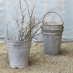 vintage galvanized bucket greenhouse design studio