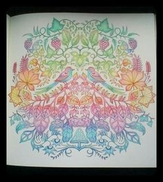 Johanna Basford Enchanted Forest Secret Garden Coloring Pencils Colouring Gallery