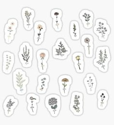flower aesthetic Stickers featuring millions of original designs created by independent artists. Decorate your lapto. Stickers Kawaii, Preppy Stickers, Anime Stickers, Cool Stickers, Laptop Stickers, Bullet Stickers, How To Make Stickers, Journal Stickers, Scrapbook Stickers