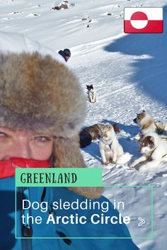 Dog Sledding Arctic Circle, Greenland