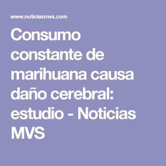 Consumo constante de marihuana causa daño cerebral: estudio - Noticias MVS