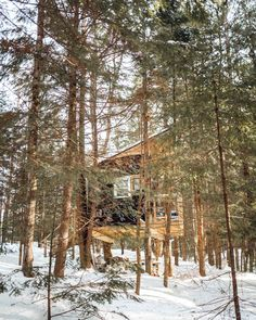 Vermont Treehouse Airbnb: A Weekend Getaway from NYC - Find Us Lost Unique Hotels, Beautiful Hotels, Beautiful Places, Top Hotels, Weekend Getaways From Nyc, Winter Getaways, Ancient Harvest, Vermont Winter, Usa House
