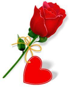 Rosa con i love you