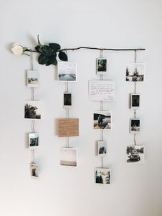 Flower picture display 2019 Picture wall polaroids Polaroid wall floral flowers rose pictures bedroom decor bedroom pictures hanging pictures diy picture display The post Flower picture display 2019 appeared first on Floral Decor.