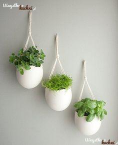 Zamiast gracić parapet możesz doniczki z ziołami powiesić na ścianie...
