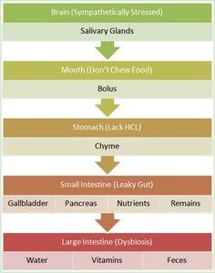 fermented foods, food help, ferment food