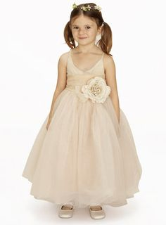 Lydia Champagne Bridesmaid Dress - young bridesmaids  - Wedding