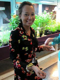Museum staff member releases Swallowtail butterflies. | Amazing Butterflies, 2013