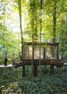 Tree House Restaurant Decatur Georgia