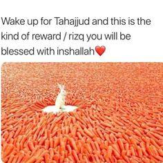 Islamic Qoutes, Islamic Teachings, Islamic Messages, Islamic Dua, Islamic Inspirational Quotes, Muslim Quotes, Allah Islam, Islam Quran, Tahajjud Prayer