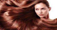 Can damaged hair be repaired? How do you moisturize damaged hair? How can I repair my damaged hair at home? Can mayonnaise help damaged hair? Healthy Scalp, Healthy Hair Tips, Silky Smooth Hair, Grow Long Hair, Quick Hairstyles, Cool Hair Color, Fall Hair, Hair Looks, Your Hair