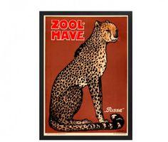 zoo-geparden-pusse-zoo-9 #plakatgalleridk #copenhagen #copenhagenzoo
