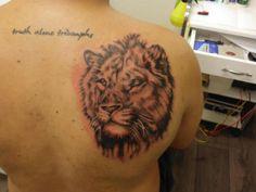 Lion tattoo...