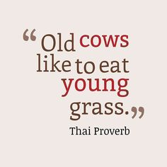 Old cows like to eat young grass.