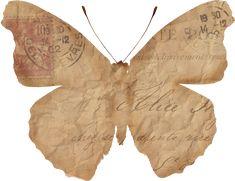Free printable graphics, DIY, tutorials and ideas Vintage Ephemera, Vintage Paper, Vintage Art, Vintage Photos, Borboleta Diy, Illustrations Vintage, Decoupage, Butterfly Template, Butterfly Art
