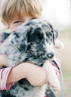 {martalocklear} Puppy Dog Dogs Puppies