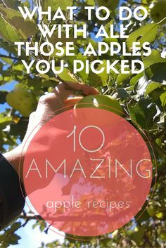 Who has apples and needs great recipes. Here are 10 amazing ideas on how to work your apple harvest into recipes. We've got apple cocktails, apple soup, apple appetizers, apple desserts...you get the ides.