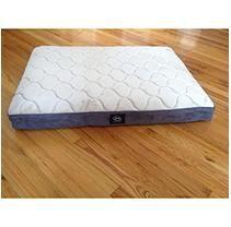 Serta Perfect Sleeper Elite Orthopedic Pillow Top Pet Bed (Grey)