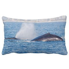 This throw pillow features a pair of Humpback whales taking a breather on the surface in the waters off Surfers Paradise, Australia during their annual migration.